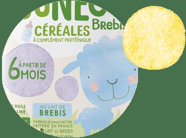 lait de brebis en poudre pour bébé